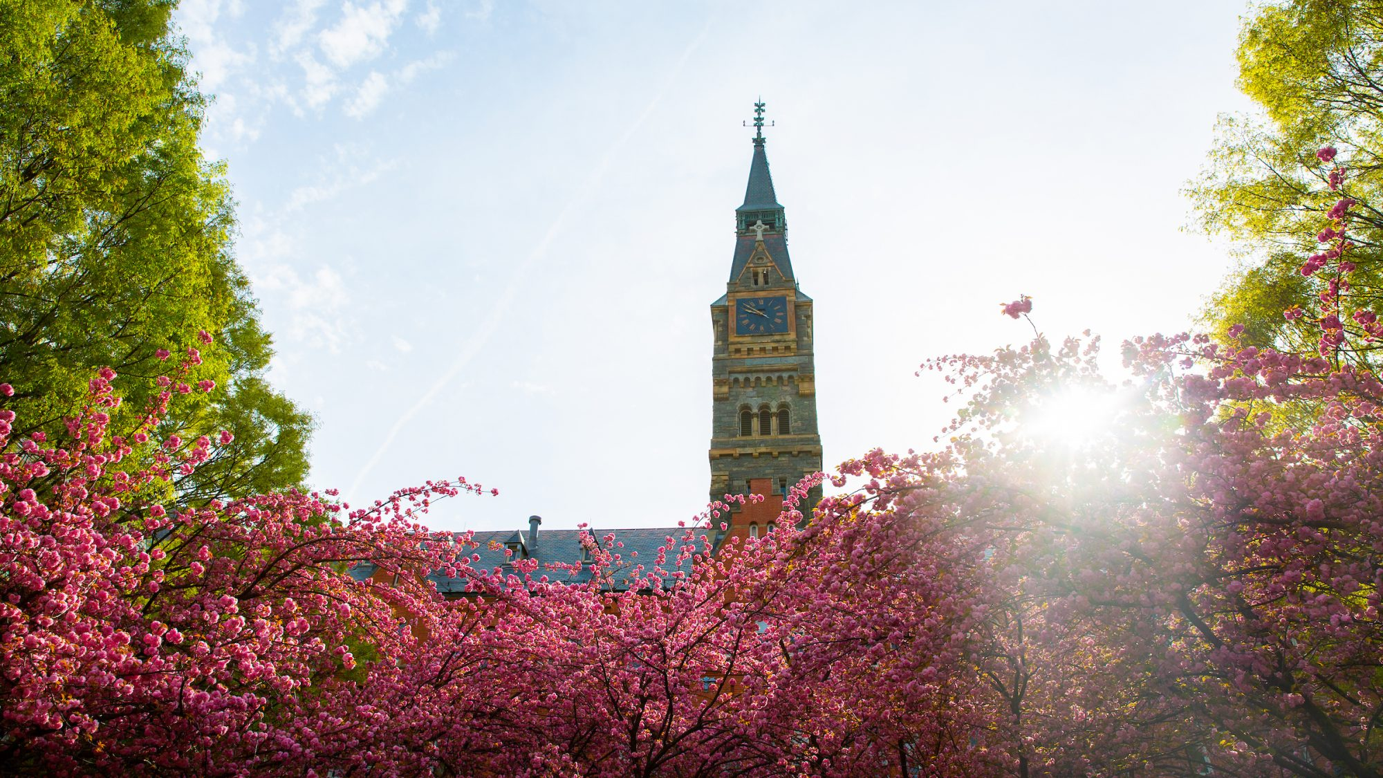 Healy Hall with spring flowers