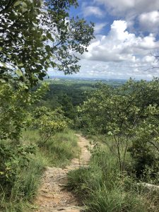 Photo of Kennesaw Mountain trail.