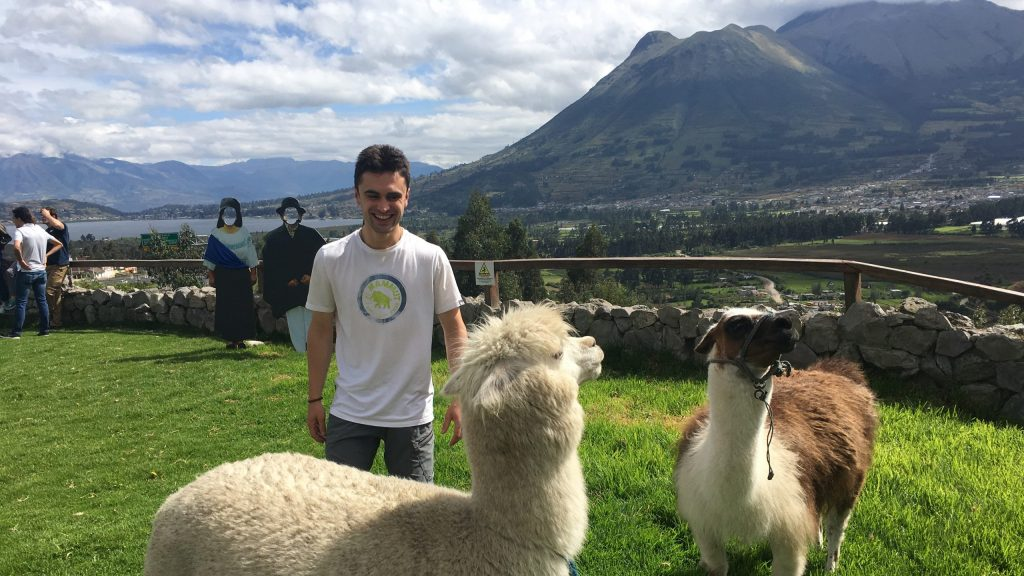 Brian Britt pictured with some alpacas. A mountainous vista can be seen in background.