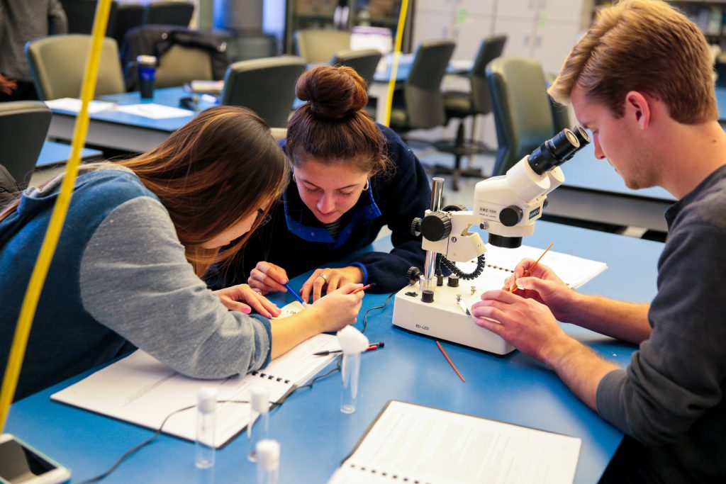 Students in science lab